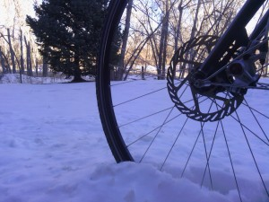 GRAVELBIKE.com Boulder Colorado Schwalbe Marathon Winter Sun Ringle Salsa Vaya Avid BB7